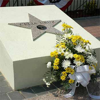 Celia Cruz Star